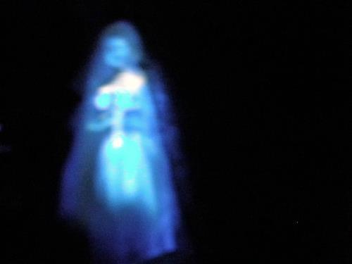 ghost seen in Williamsburg Virginia near Peyton Randolph House